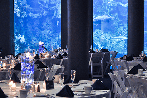 PIttsburgh Zoo - Pittsburgh Event Venues